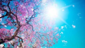 Havalar ısınıyor! Hafta başından itibaren Türkiye bahar havasının etkisi altına giriyor
