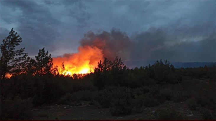 Son dakika! Muğla ve İzmir'de korkutan yangınlar