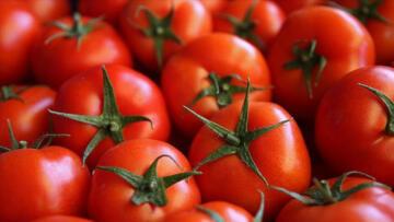 Nisanda en çok domatesin fiyatı arttı