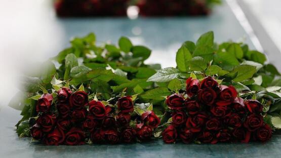 Yalova'daki seralarda gül satışları arttı